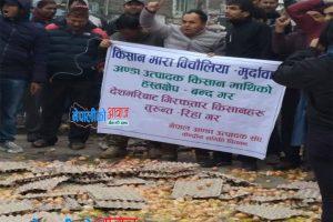 अण्डा उत्पादक किसान पक्राउको  विरोधमा भरतपुरमा अण्डानै रोडमा फ्याँकेर प्रदर्शन