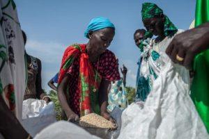 चीनद्वारा दक्षिण सुडानलाई एक हजार टन चामल सहयोग