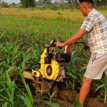 माडीमा आइडिया फर नेपालद्वारा संचालित बृहत् खेती सबैको आकर्षण बन्दै